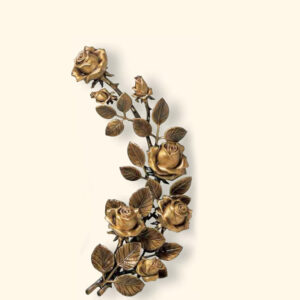 Róża 29369/27
