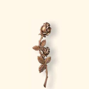 Róża 29541/21