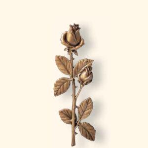 Róża 29574/27